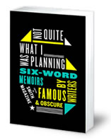Not Quite What I Was Planning by Larry Smith and Rachel Fershleiser (HarperCollins, 2008)