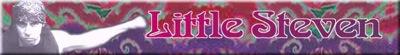littlestevenbg_psy_2_400x55.shkl.jpg